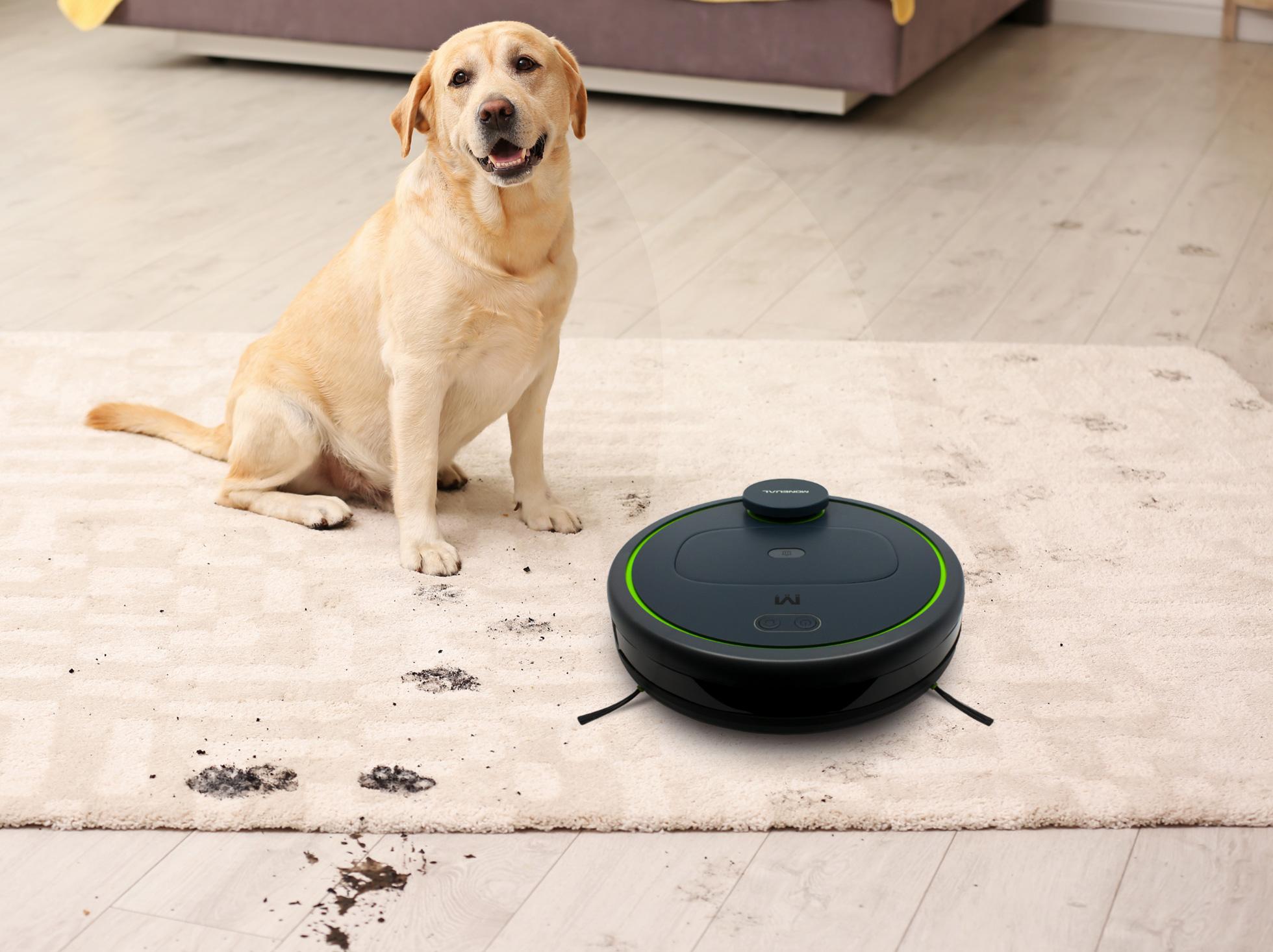Jeśli masz psa lub koto odkurzacz sprzatający idealnie będzie zbierał ich sierść.