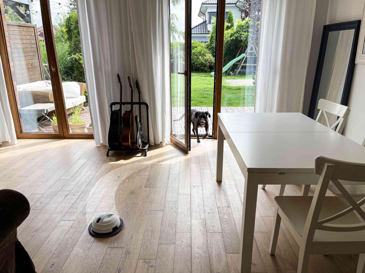 robot mopujący podłogę bez dywanu